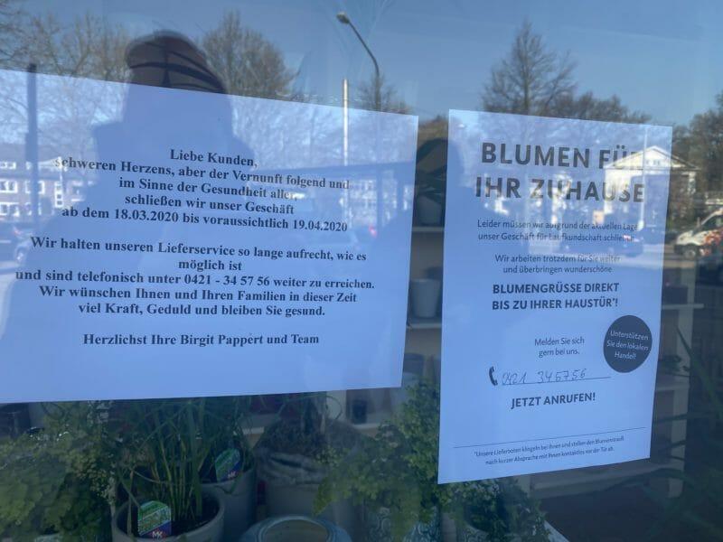 Blumen EKKEHARD LANGE: Schwachhausen